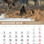 kalendarz 12