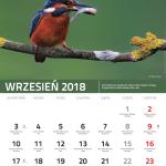 kalendarz 9